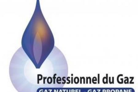 Eco-Syst, un professionnel du gaz